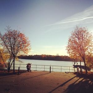 God morgon Stockholm, Sverige! Hälsningar Lilla Essingen#luxdagfordag