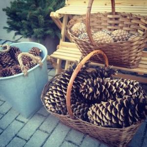 Kom och köp härliga kottar till julen! mellan 50-150kr dagens husman är frasig sej med broccoli, tartarsås, citron och dill!! Välkommen