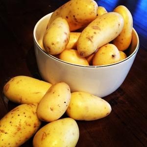 Potatis från Tollby gård 12kr/hg! dagens husman idag är fiskgryta, räkor, fänkål, tomat, dill och vitlökskräm för 115kr! Välkommen!