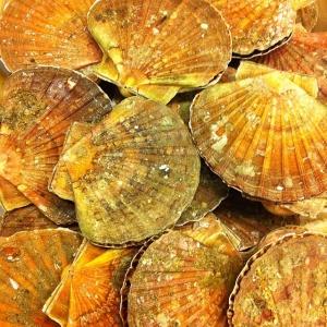 Färsk pilgrimsmussla från Normandie 25:-/st. Dagens husman: Pepparstekt rostbiff med potatissallad och rostad purjolök 115:- #takeaway #walkthrough