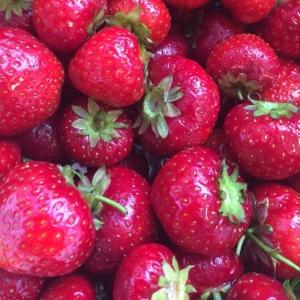 Välkomna och köp jordgubbar från Stenhusegård i våran Walk Through, 30:- för 250g. Dagens husman: Kräftfärserad spättafilé med blomkål och gurka 115:-/85:- i WT. Välkomna! #luxdagfordag #husman #jordgubbar