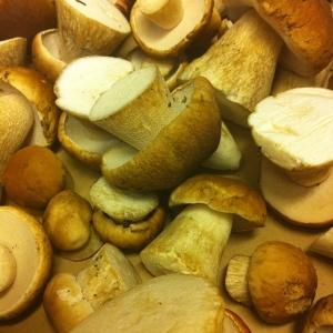 Karl-Johan svamp från Värmland 45:-/hg!! Fantastisk! Dagens husman: Svartpepparstekt rostbiff med dragonmajonnäs och sensommarsallad 115:- #walkthrough 85:-