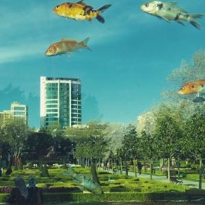 I Istanbul kan fiskarna flyga. #istanbul #flygfisk #vackert