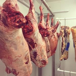 Härlig känsla med hängmörningskyl på @luxdagfordag Just nu väntar vi på att lamm från Ekeby gård utanför Eskilstuna samt Biff från Ånhammars säteri utanför Gnesta skall uppnå optimal dyngsgrad #lux #lusdagfördag #luxdagfordag #hängmörat #lamm #biff #dygnsgrader #köttkyl