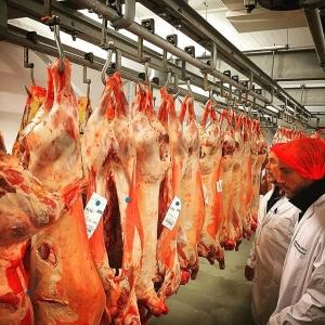 Utflykt till kötthandlarn idag #luxdagfordag #farmtotable #lamm #gammalkossa