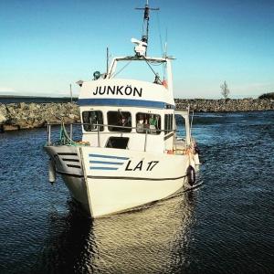 Ett skepp lastat med siklöja. #löjrom #siklöja #farmtotable #luxdagfördag #cheflife #junköfiskarna #junkön