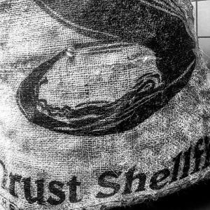 Till kvällens #farmersdinner kommer bland annat Adrian från Orust Shellfish och levererar ostron och blåmussla! Missa heller inte att beställa morgondagens fredagspåse med potatis/purjolökssoppa med räkor, honungsglaserad fläsksida och kladdkaka med grädde #luxdagfördag #farmtotable