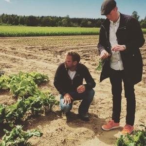 """Gotland levererade verkligen, Antes """"hemliga"""" ekologiska odling på Stora Tollby Gård var en av höjdarna. På torsdag mellan 16-18 finns Antes grönsaker till försäljning på @luxdagfordag dax för #farmersmarket (Jordgubbarna är galet goda) #försttillkvarn #luxdagfördag #farmersdinner #farmtotable"""