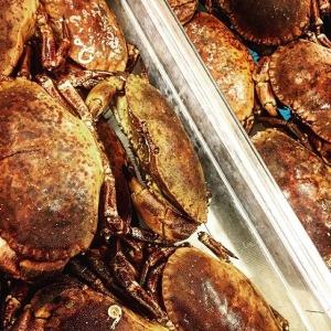 Pigga krabbor hemma för kokning till veckans fredagspåse???? #luxdagfördag #kokakrabba #vardagslux