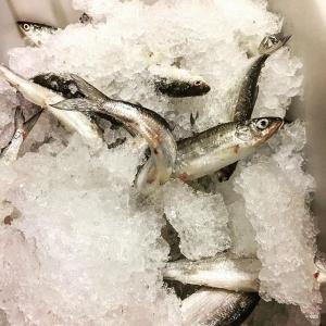 Viltvecka @luxdagfordag hela veckan men vill man ha fisk så serverar vi siklöja och löjrom från #pervidlund @angsofisk  #farmtotable #vardagslux #färskfisk #rigor