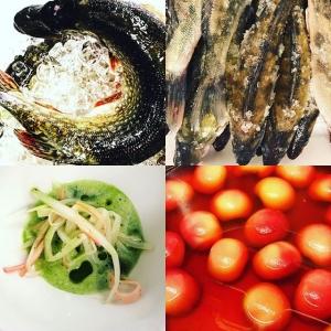 Gädda, vit sparris, gös och persika innefattar kvällens 4-rättersmeny? välkomna! #ängsöfisk #hjo #vitpersika #luxdagfördag