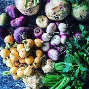 Härligt med höst, tid för rotfrukter, svamp och vilt?  #hängkyl #luxdagfördag #kålrot #rotselleri #svedjerova #majrova